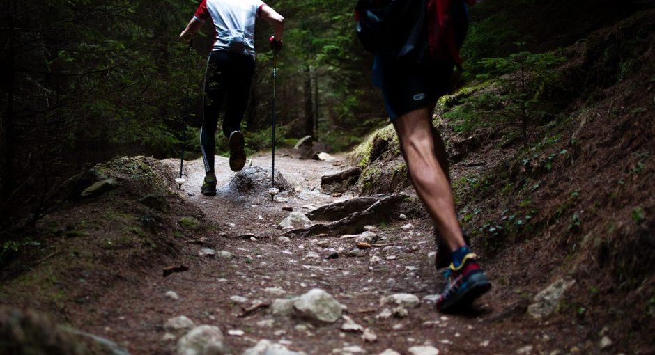 Marathon Training Program For Beginner Runners